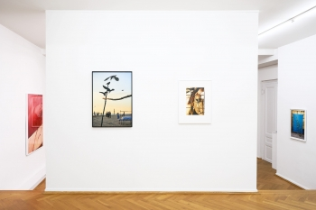 http://flomaak.net/files/gimgs/th-58_exhbition_view_collected_stories_1600_04.jpg